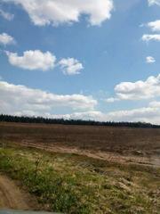Продаю земельный массив в поселке Садаковский.